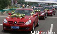 China World Life Images