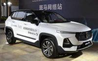 [Gallery] Baojun RS-5 compact SUV with New Logo 2019 model
