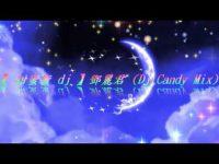 【 甜蜜蜜 dj 】鄧麗君 (Dj Candy Mix) [附歌詞]