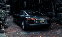 [Gallery] A group of random Audi cars