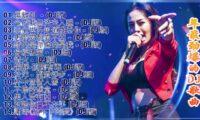 Chinese DJ Remix