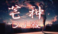 【最新 DJ版】音阙诗听《芒种》一想到你我就